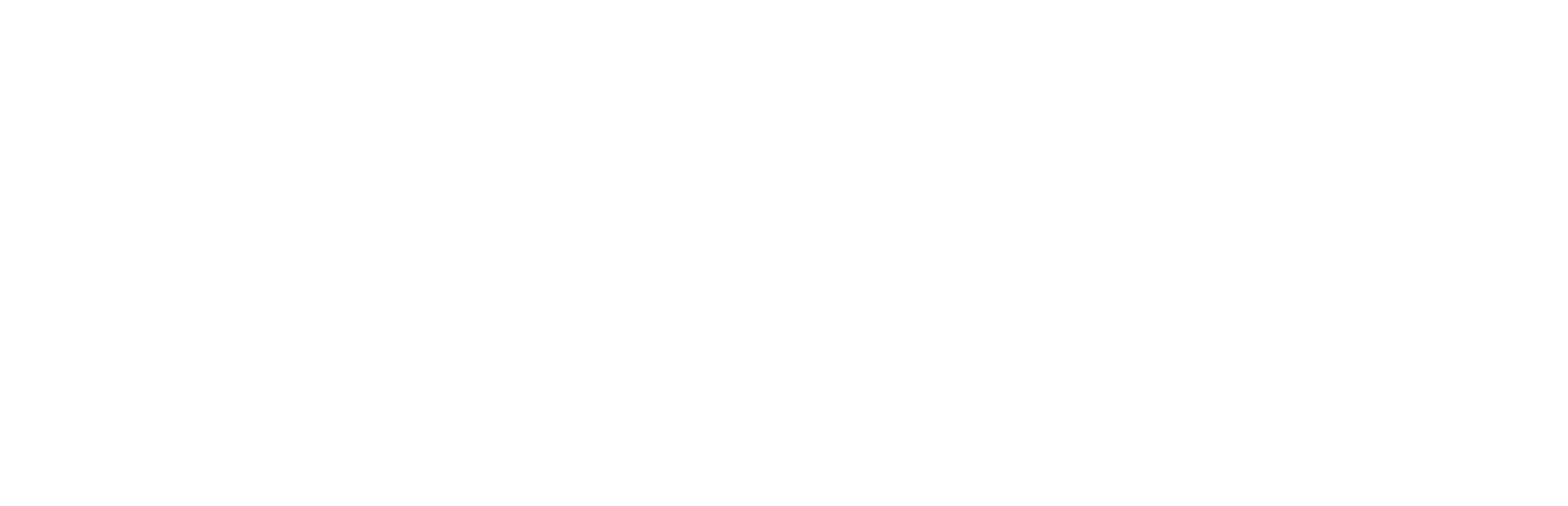Comprehensive Accident and Injury Light